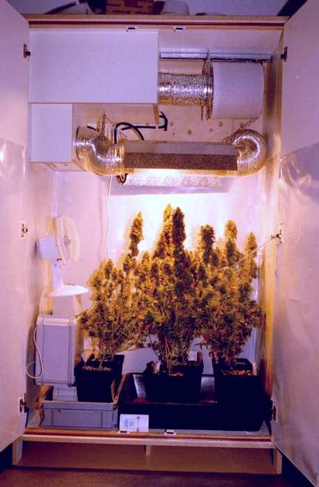 marijuana closet with filter system
