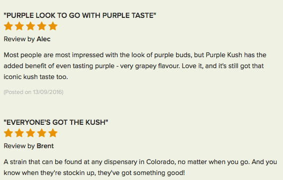 Purple Kush review 4