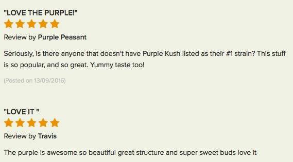 Purple Kush review 5